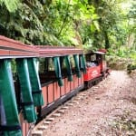 Monteverde Cloud Forest Train tour