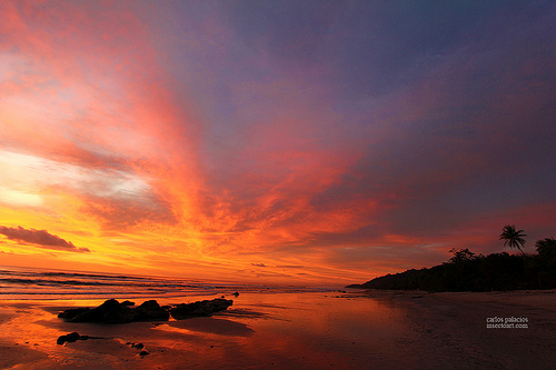Spectacular Santa Teresa Beach in Costa Rica