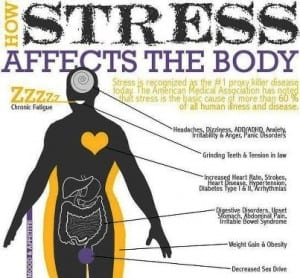 Stress affects our bodies and health