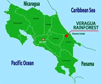 Veragua Rainforest Park is a top oneday tour on Costa Ricas