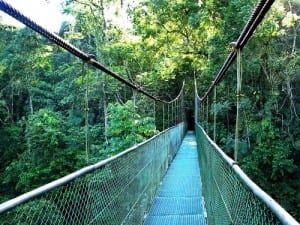 Tirimbina nature reserve in Sarapiqui, Costa Rica