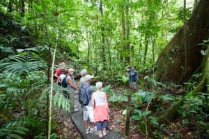 Hike a variety of trails, from easy to challenging, at Veragua Rainforest