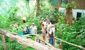 Veragua Rainforest Research & Adventure, butterfly garden, Costa Rica