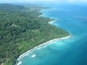 Costa-Rica-Osa-Peninsula-300x225