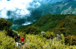 High mountain trekking by San Gerardo de Dota
