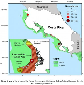 Map-of-proposed-no-fishing-area-off-Osa-Peninsula-Costa-Rica-295x300