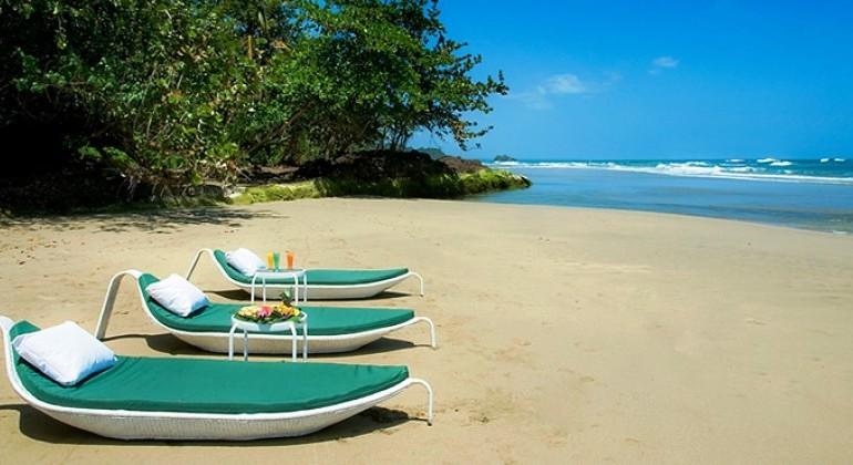 La Camèlèon-true-Caribbean-tropical-paradise-in-Costa-Rica