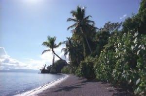 Playa Nicuesa Beach Costa Rica