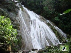 Karen Mogensen Reserve - Bridal Veil Waterfall