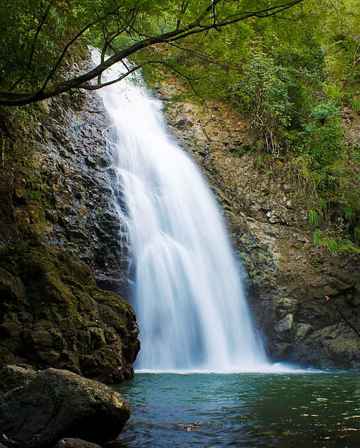 Montezuma Waterfall, image by Jonathan Greeley