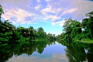 Manatus-Tortuguero-Digital-Detox-is-the-preferred-choice