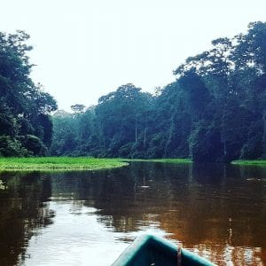 Canal at Tortuguero National Park, photo credit @roberbenitorodriguez.