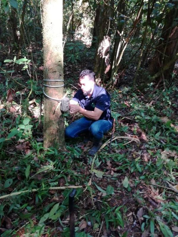 The-feline-presence-in-the-nicuesa-rainforest-is-enchanting