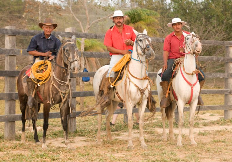 Cowboys of Guanacaste Costa Rica at Hacienda Guachipelin