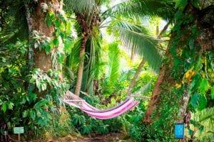 digital detox vacation costa rica
