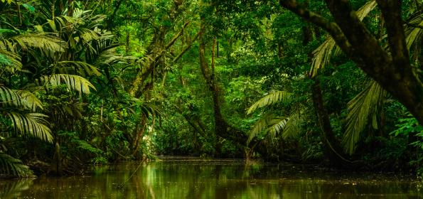 Discovering-northern-lowlands-costarica-beyond-arenal